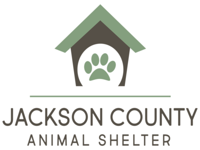 JC_AnimalShelter_web