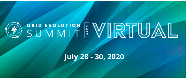 Virtual Grid Evolution Summit